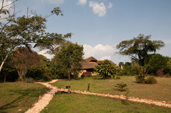 Chimp's Nest Lodge